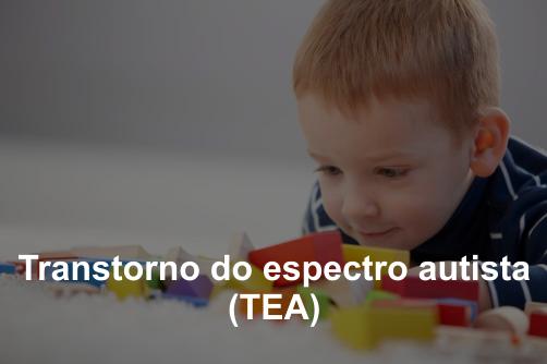Curso sobre Transtorno do espectro autista